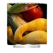 Taste Of Summer Shower Curtain by Karen Wiles