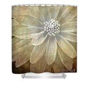 Textured Dahlia Shower Curtain by Meirion Matthias