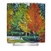 The Big Red Tree Shower Curtain by Lee Ann Shepard