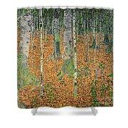The Birch Wood Shower Curtain by Gustav Klimt