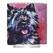 The Caring Cairn Shower Curtain by Lea S
