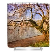The Cherry Blossom Festival Shower Curtain by Lois Bryan