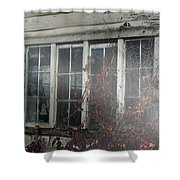 The Child at the Window Shower Curtain by RC DeWinter