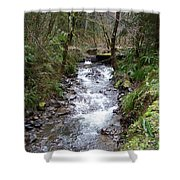 The Creek Shower Curtain by Laurie Kidd