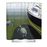 The Curiosity Of Sea Turtles Shower Curtain by Gary Giacomelli