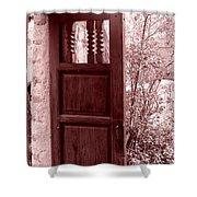 The Door Shower Curtain by Wayne Potrafka