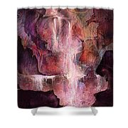The Enchanted Dream Shower Curtain by Rachel Christine Nowicki