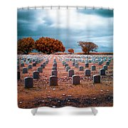 The End 2 Shower Curtain by Skip Nall