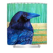 The Field Of Dreams Shower Curtain by Brian  Commerford