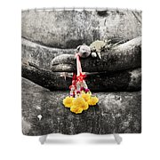 The Hand Of Buddha Shower Curtain by Adrian Evans