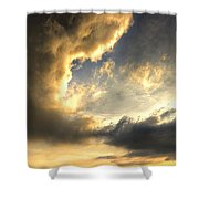 The King Of His Domain Shower Curtain by Meirion Matthias