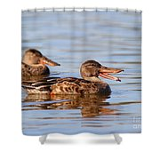 The Laughing Duck Shower Curtain by Wingsdomain Art and Photography