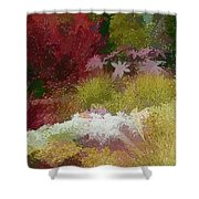 The Painted Garden Shower Curtain by Tom Prendergast