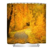 The Pathway Of Fallen Leaves Shower Curtain by Tara Turner