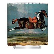 The Piebald Horse Shower Curtain by Johann Georg Hamilton