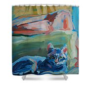 The Princess And The Pea - Sketch Shower Curtain by Kimberly Santini