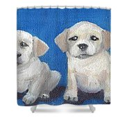 The Pups 2 Shower Curtain by Roger Wedegis