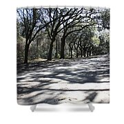 The Road Home Shower Curtain by Carol Groenen