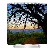 The Road Less Traveled Shower Curtain by Skip Hunt
