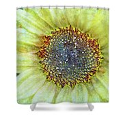 The Sunflower Shower Curtain by Tara Turner