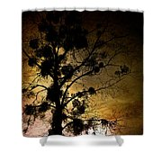 The Sunset Tree Shower Curtain by Loriental Photography
