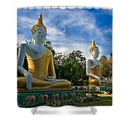 The Three Buddhas  Shower Curtain by Adrian Evans