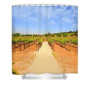 The Vineyard Shower Curtain by Cheryl Young