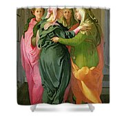 The Visitation Shower Curtain by Jacopo Pontormo