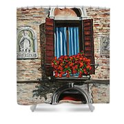 The Window Shower Curtain by Charlotte Blanchard
