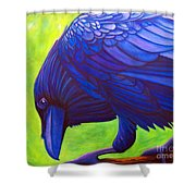 The Witness Shower Curtain by Brian  Commerford