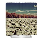 Thirsty Shower Curtain by Laurie Search