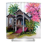 THIS OLD HOUSE  Shower Curtain by KARIN KELSHALL- BEST