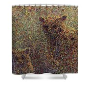 Three Bears Shower Curtain by James W Johnson