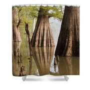Three Kings Shower Curtain by Jonas Wingfield