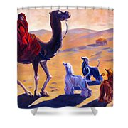 Three Wise Men Shower Curtain by Terry  Chacon