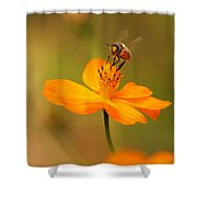 Tiny Dancer Shower Curtain by Marion Cullen