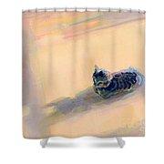 Tiny Kitten Big Dreams Shower Curtain by Kimberly Santini