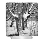 Together Shower Curtain by Wim Lanclus