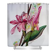 Torch Ginger  Lily Shower Curtain by Karin  Dawn Kelshall- Best