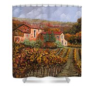 tra le vigne a Montalcino Shower Curtain by Guido Borelli