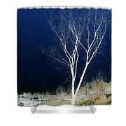 Tree By Stream I Shower Curtain by Stuart Turnbull