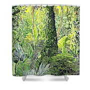 Tree In Garden Shower Curtain by Fay Biegun - Printscapes