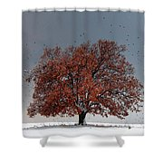 Tree Of Life Shower Curtain by Evgeni Dinev