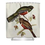 Trogon Collaris Shower Curtain by John Gould