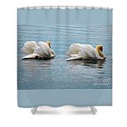 True Love Shower Curtain by Lois Bryan