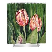 Tulips  Shower Curtain by Irina Sztukowski