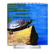Turtle Basking In The Sun Shower Curtain by Wingsdomain Art and Photography