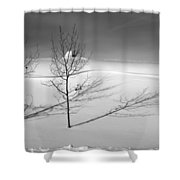 Twins Shower Curtain by Skip Hunt