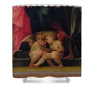 Two Cherubs Reading Detail From Madonna And Child With Saints Shower Curtain by Giovanni Battist Rosso Fiorentino