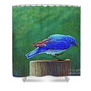 Two Step Shower Curtain by Brian  Commerford